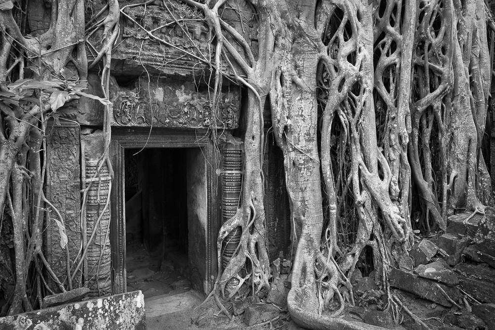 TGL Cambodia-3729-Edit-Edit-1.jpg