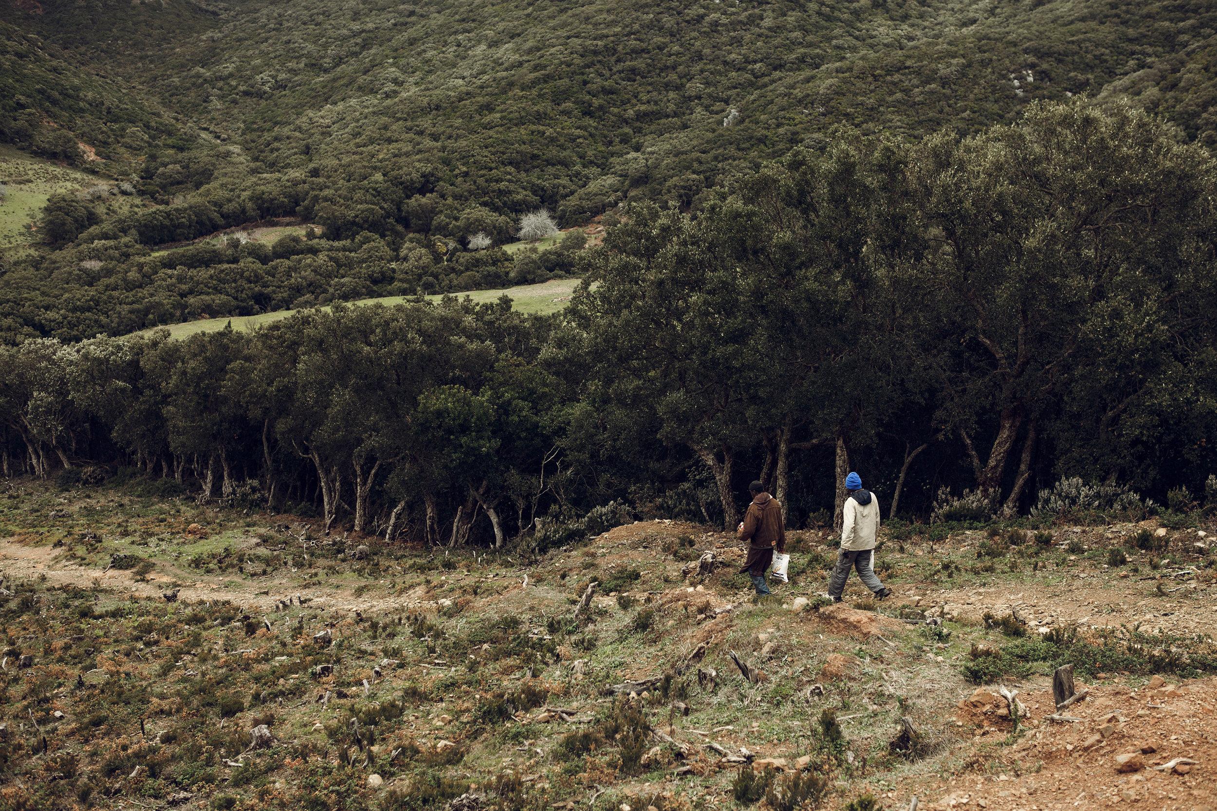 2014_VN_Marokko_003-16.jpg
