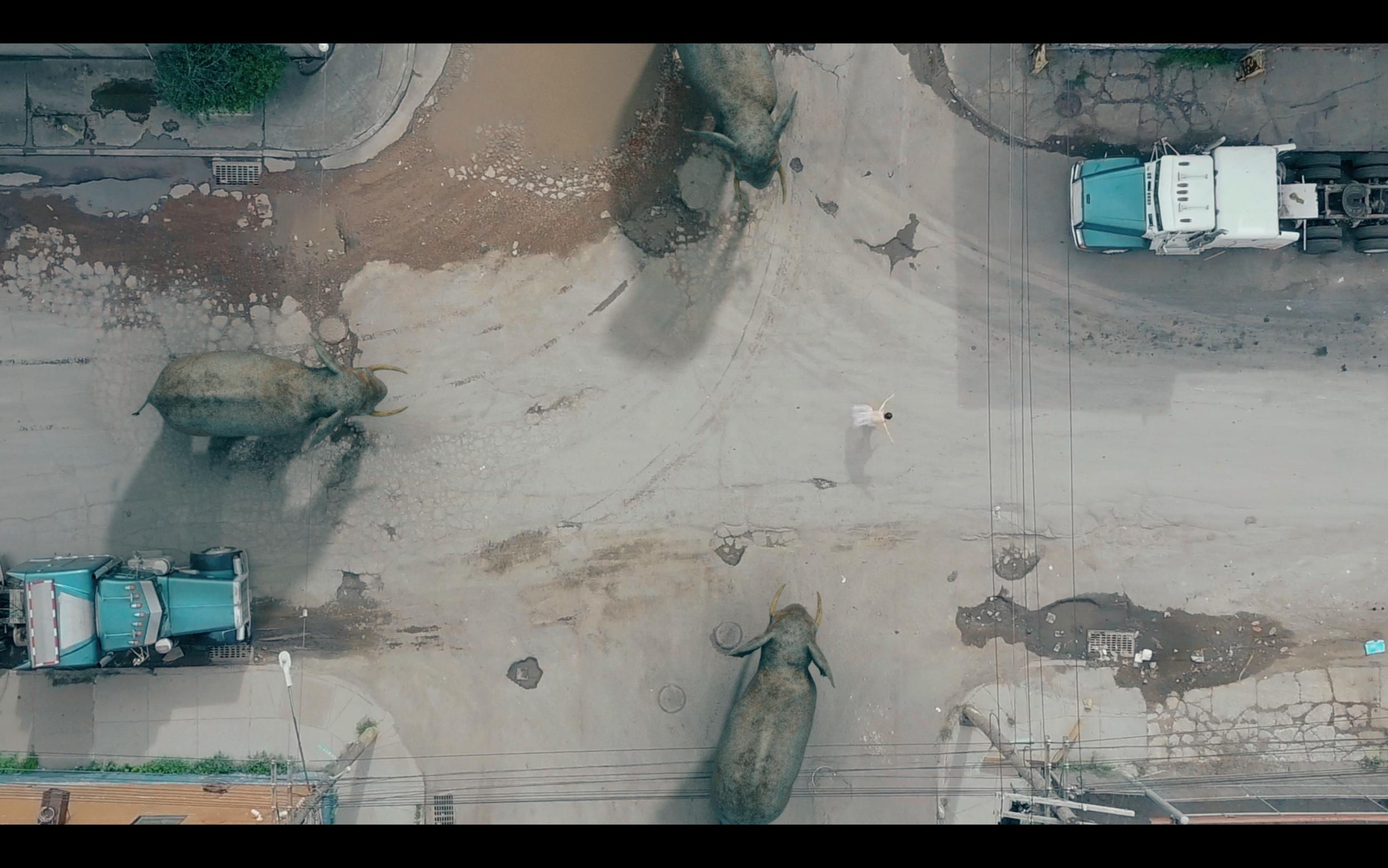Screen Shot 2018-07-21 at 3.55.49 PM.png