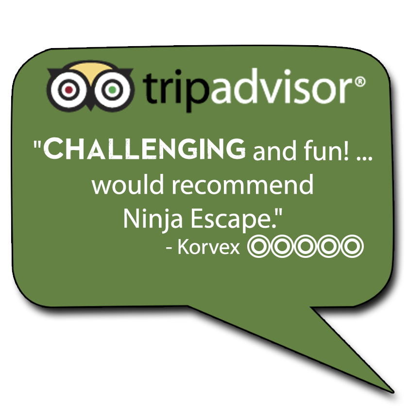 Trip Advisor Review Comment Bubble.png