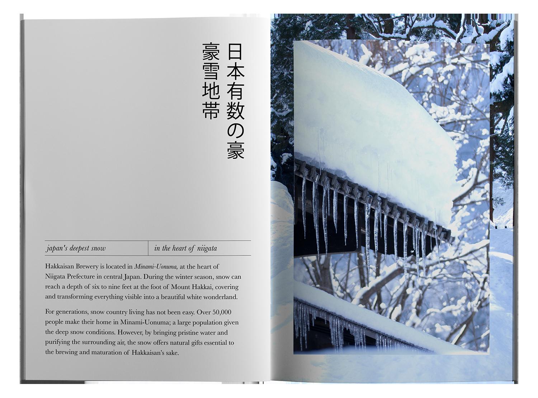 hakkaisan brochure mockup spread 3 copy web.png