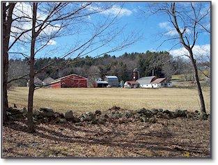 spring-farmscape.jpg