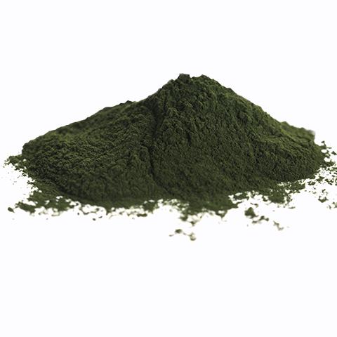 Raw Chlorella powder