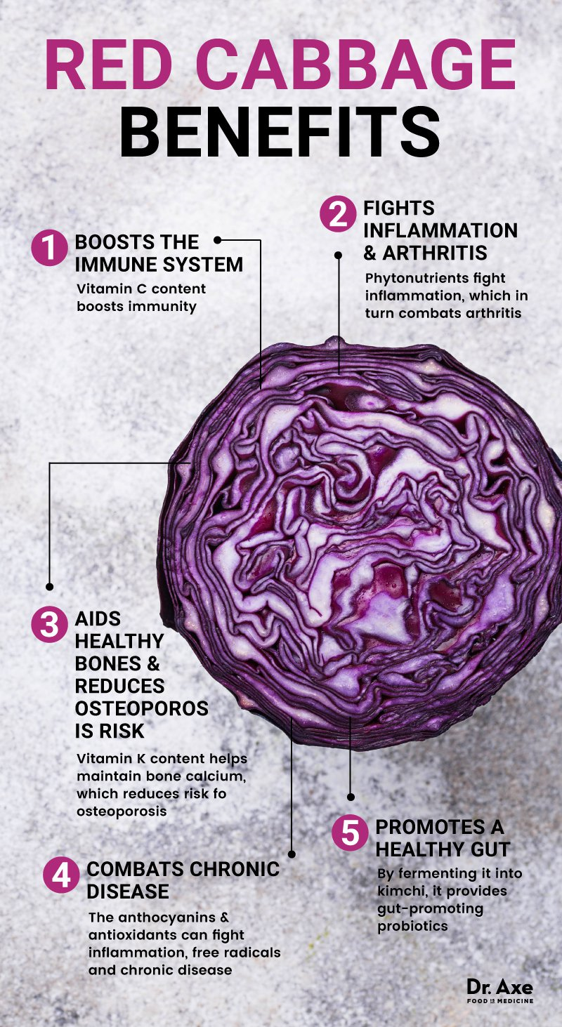 Photo Credit: Dr Axe (www.draxe.com/red-cabbage/)