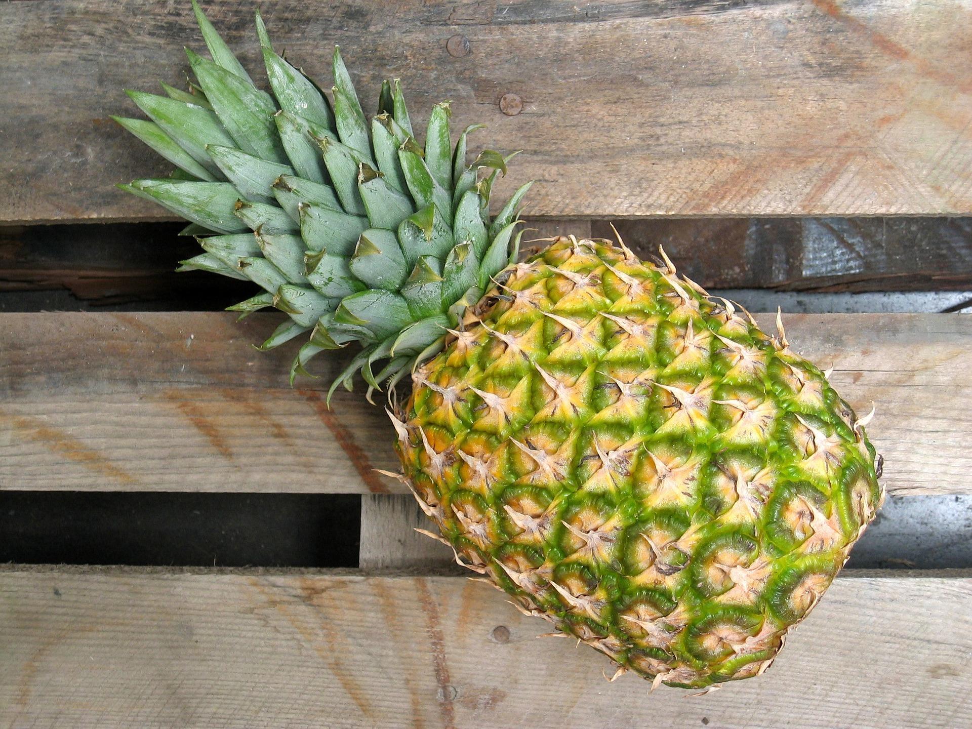 pineapple-642723_1920.jpg