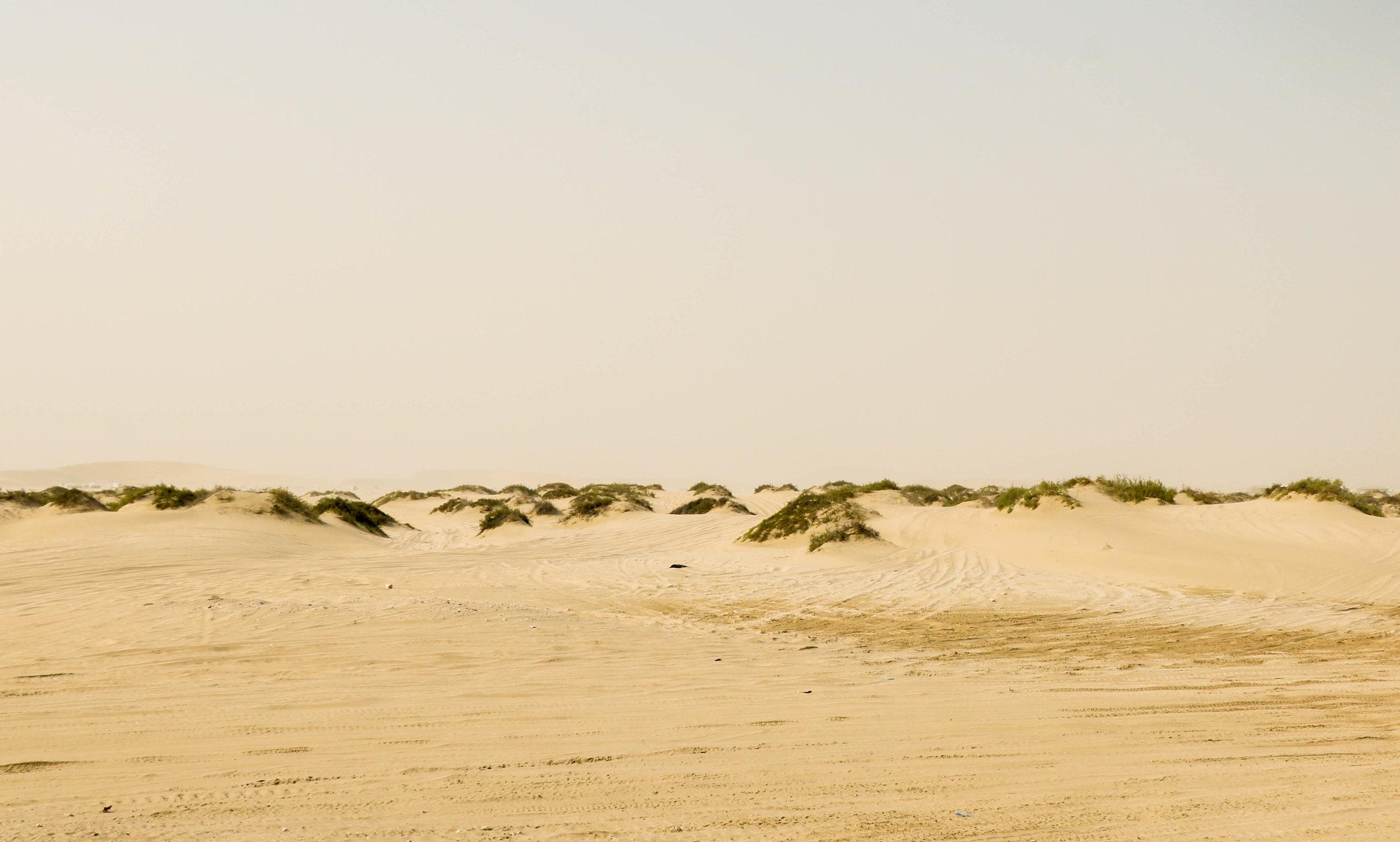 Oblique Deserts