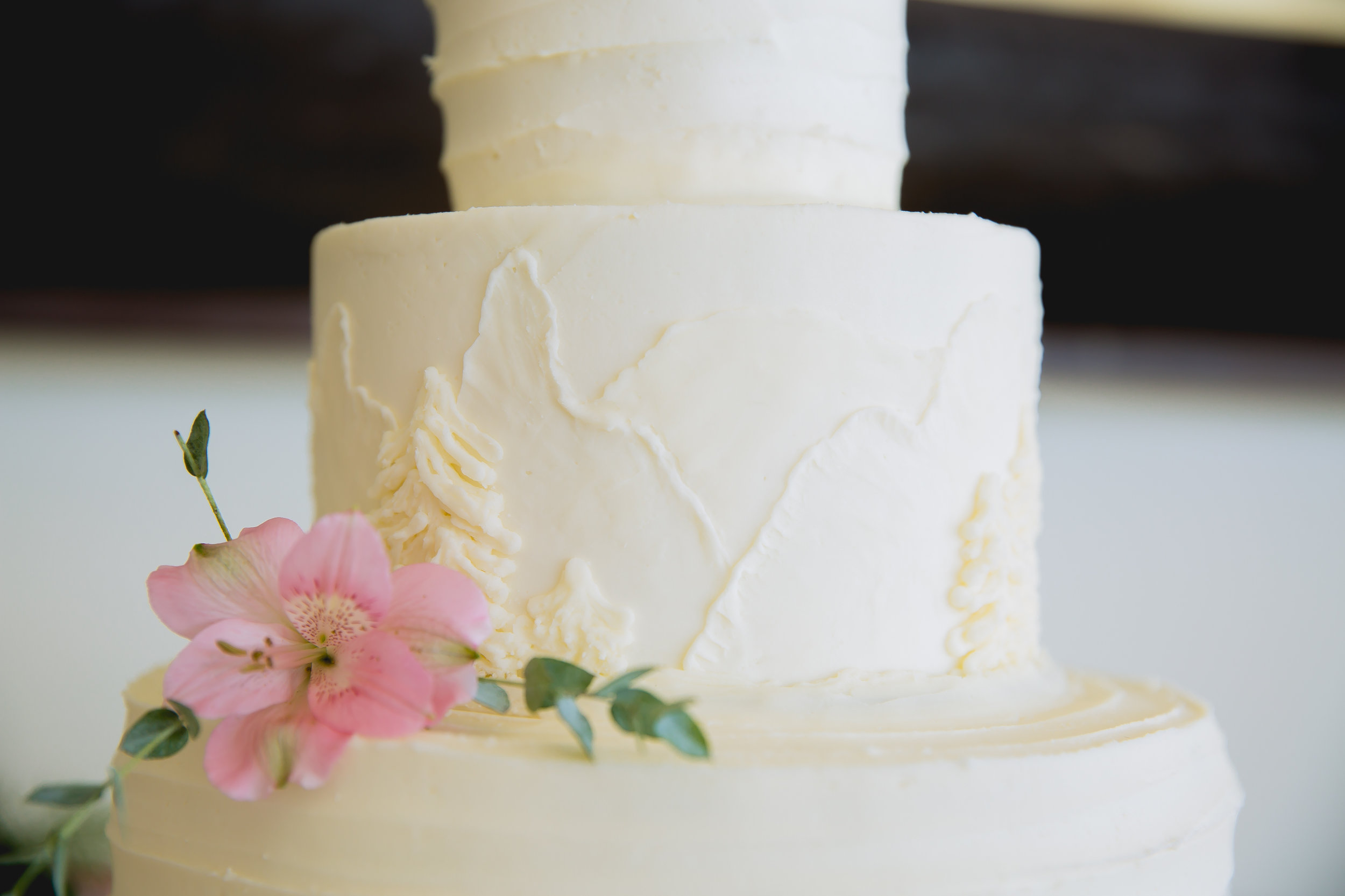 The Peaks Resort Telluride Wedding by Durango Colorado Wedding Photographer Alexi Hubbell Photography