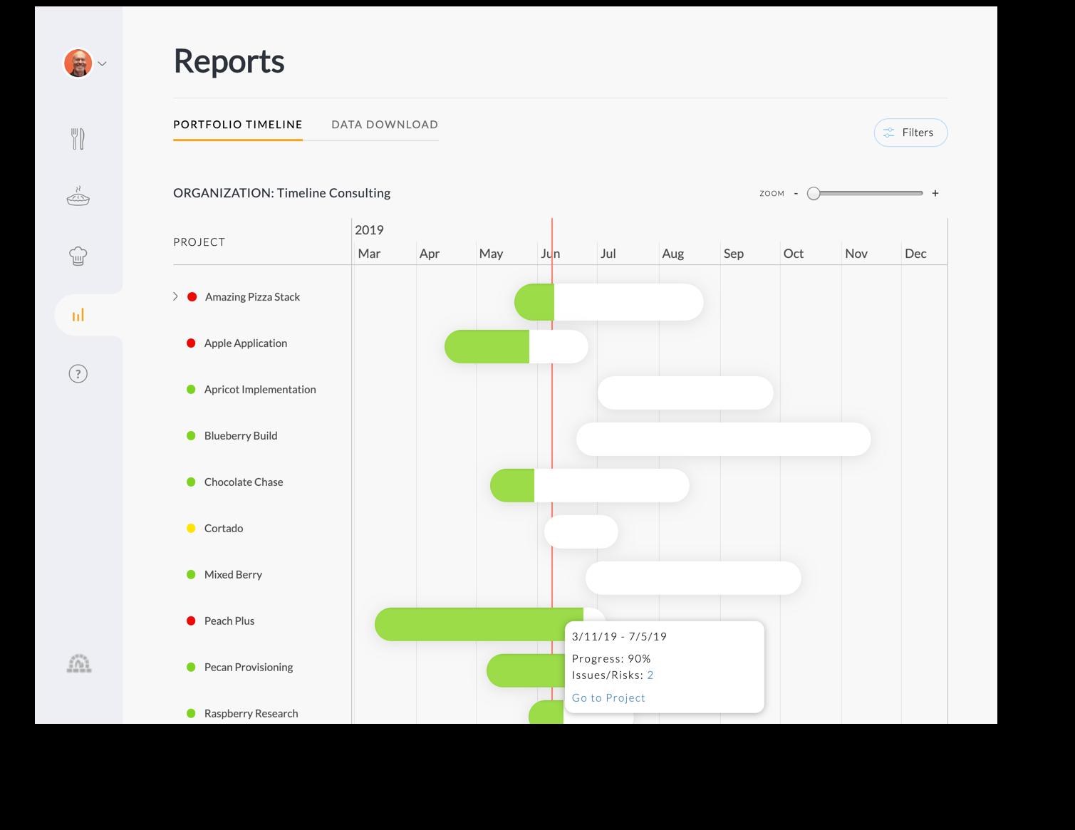 Portfolio Timeline Report.png