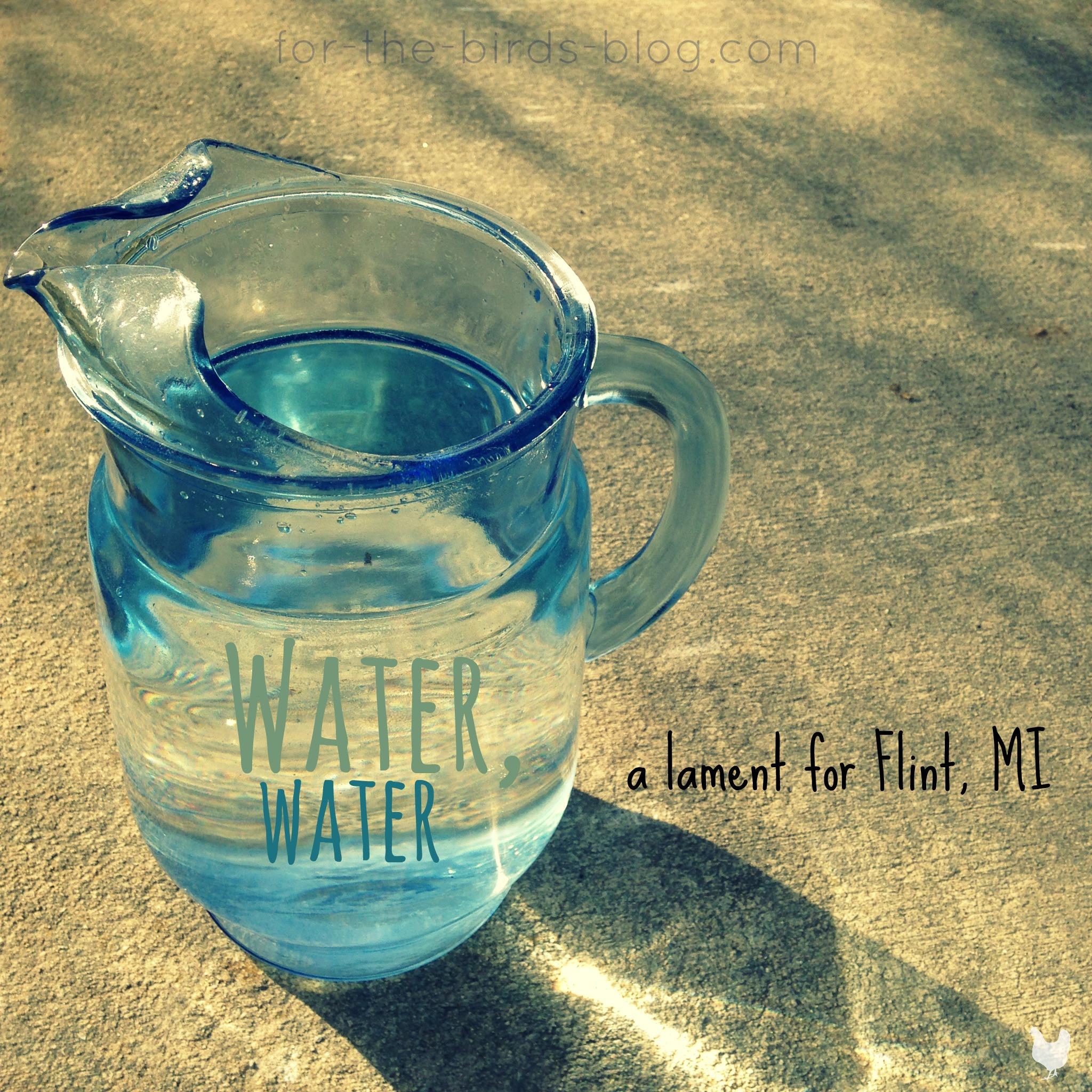 water water a lament for flint mi