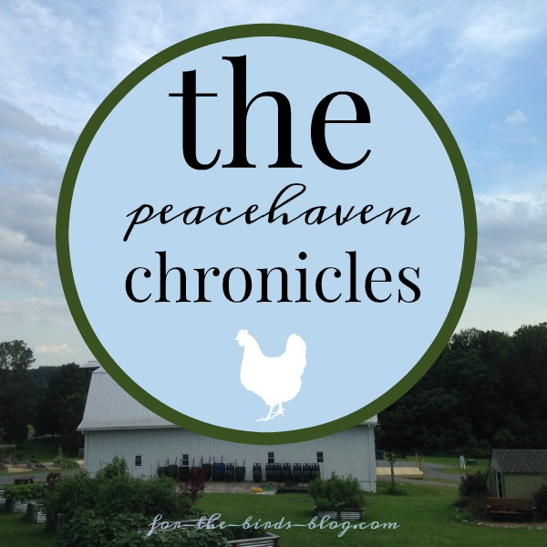 The-Peacehaven-Chronicles
