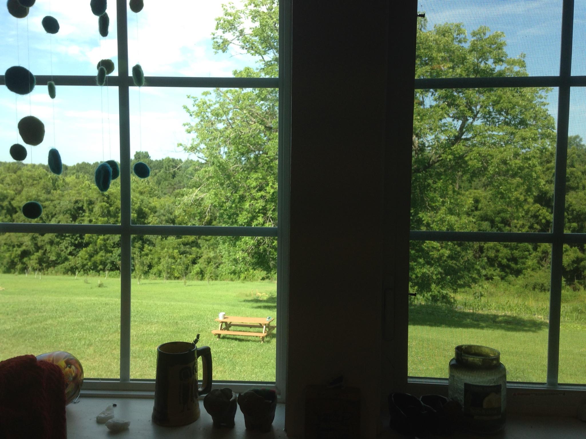 The Kitchen Window