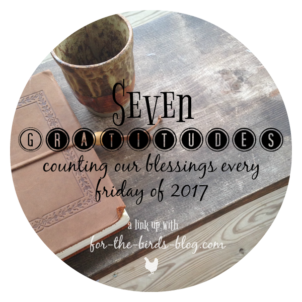 Seven Gratitudes: Counting Our Blessings Every Friday of 2017, a link up with for-the-birds-blog.com