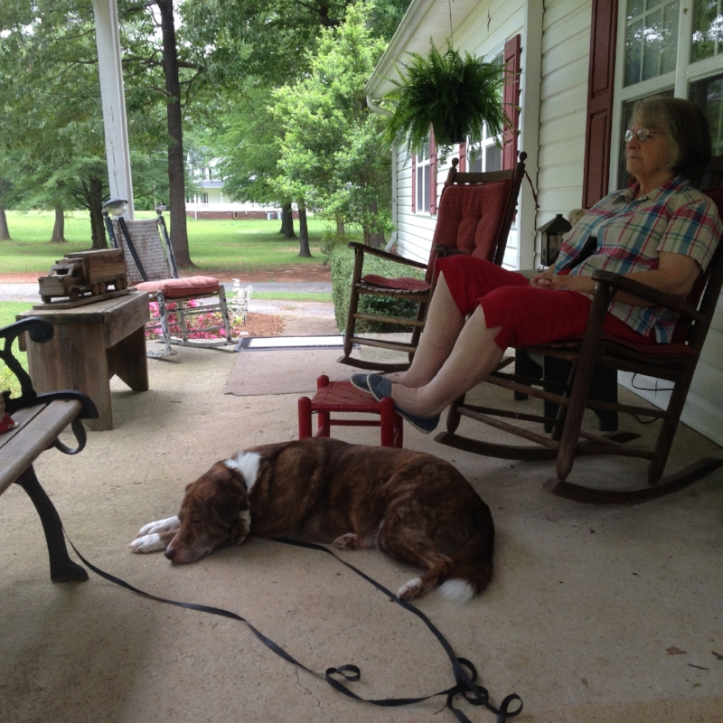 I have spent a lot of time on the porch swing this week hanging out with Grandma and our pup Barkley.