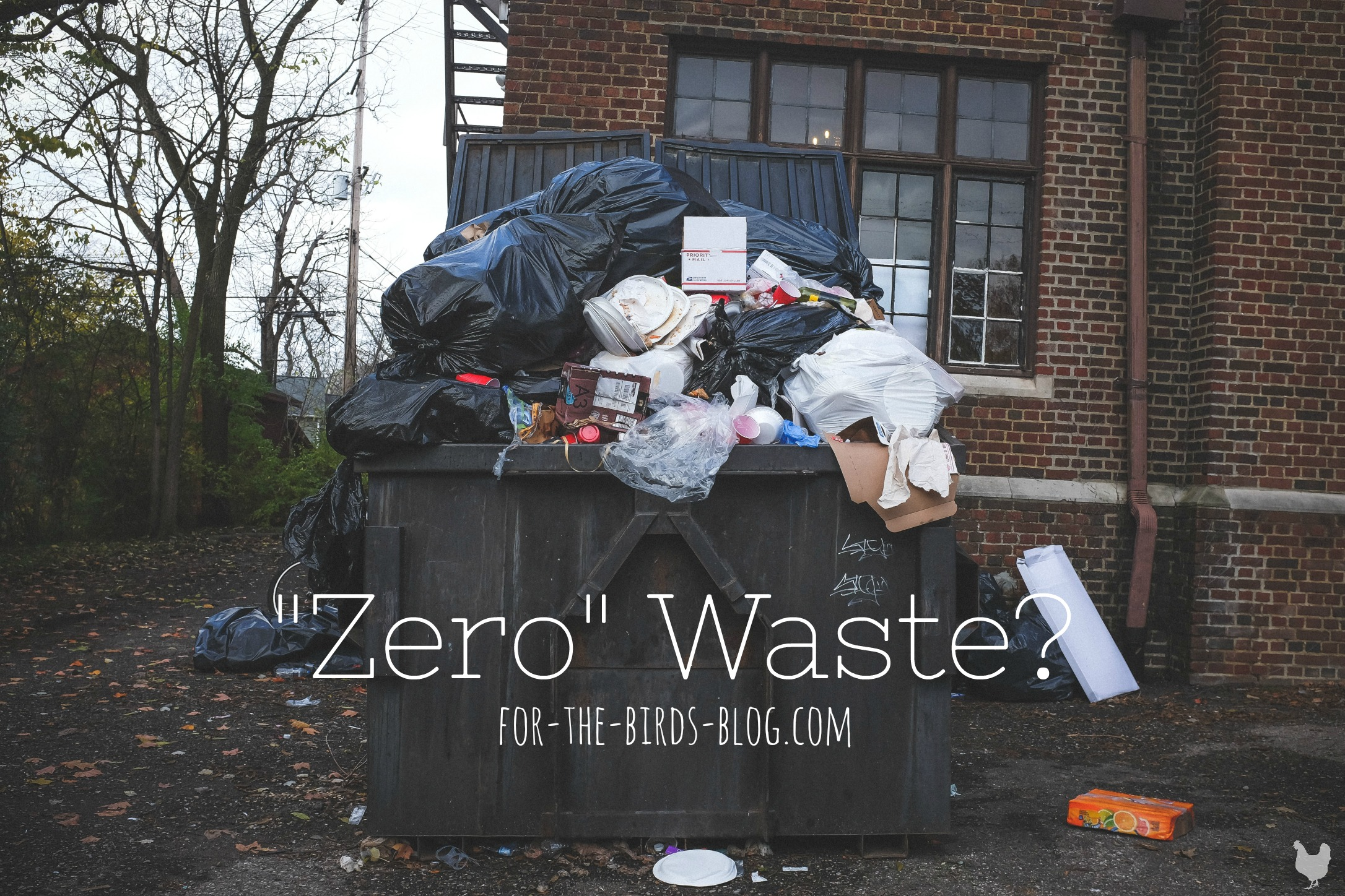 """Zero"" Waste? - For the Birds - by Leanna Coyle-Carr"