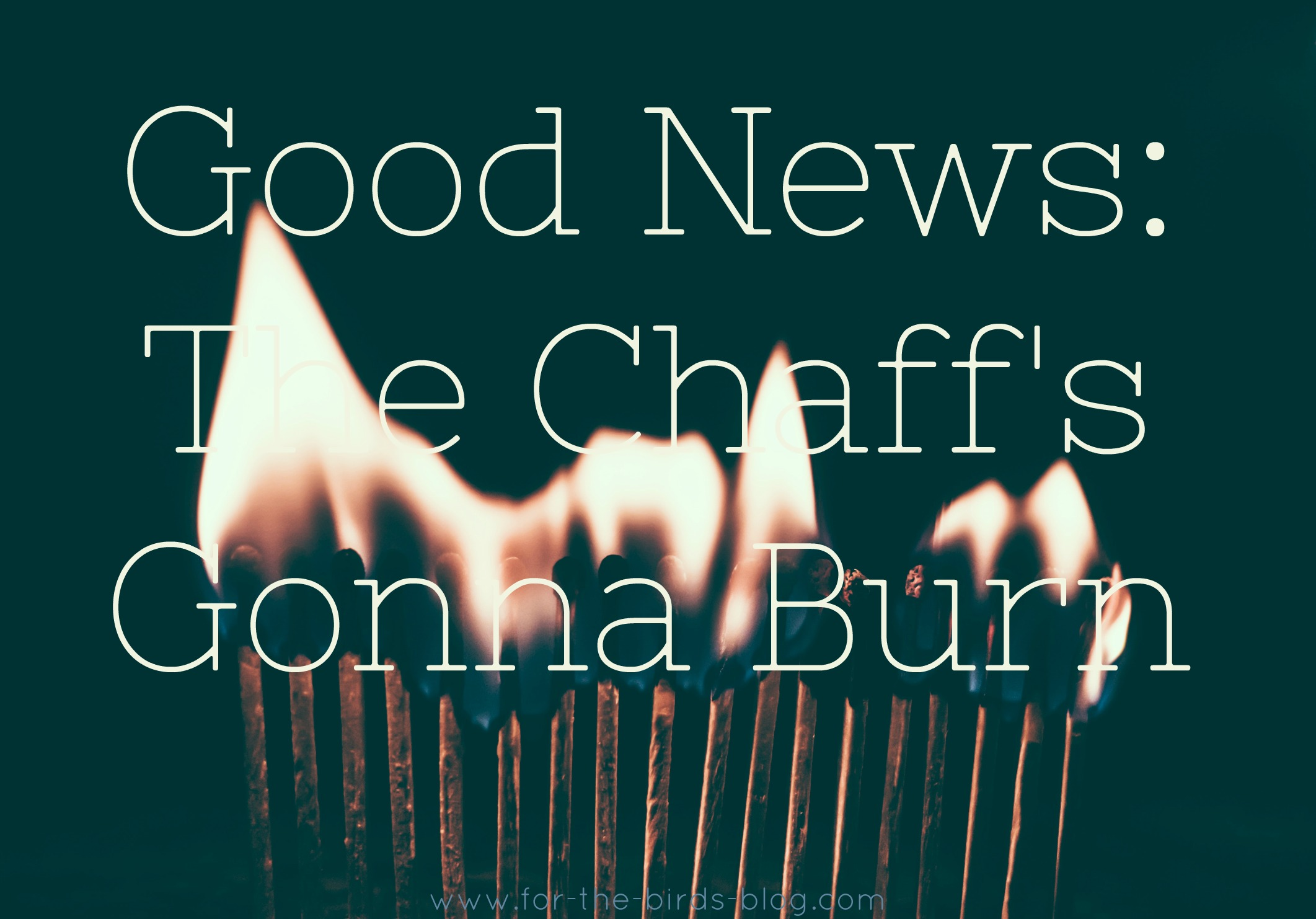 Good News: The Chaff's Gonna Burn - For the Birds - by Leanna Coyle-Carr