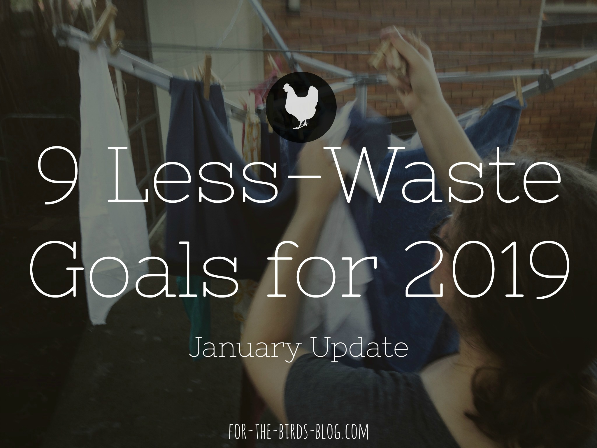 2019 Less-Waste Goals: January Update - For the Birds - by Leanna Coyle-Carr