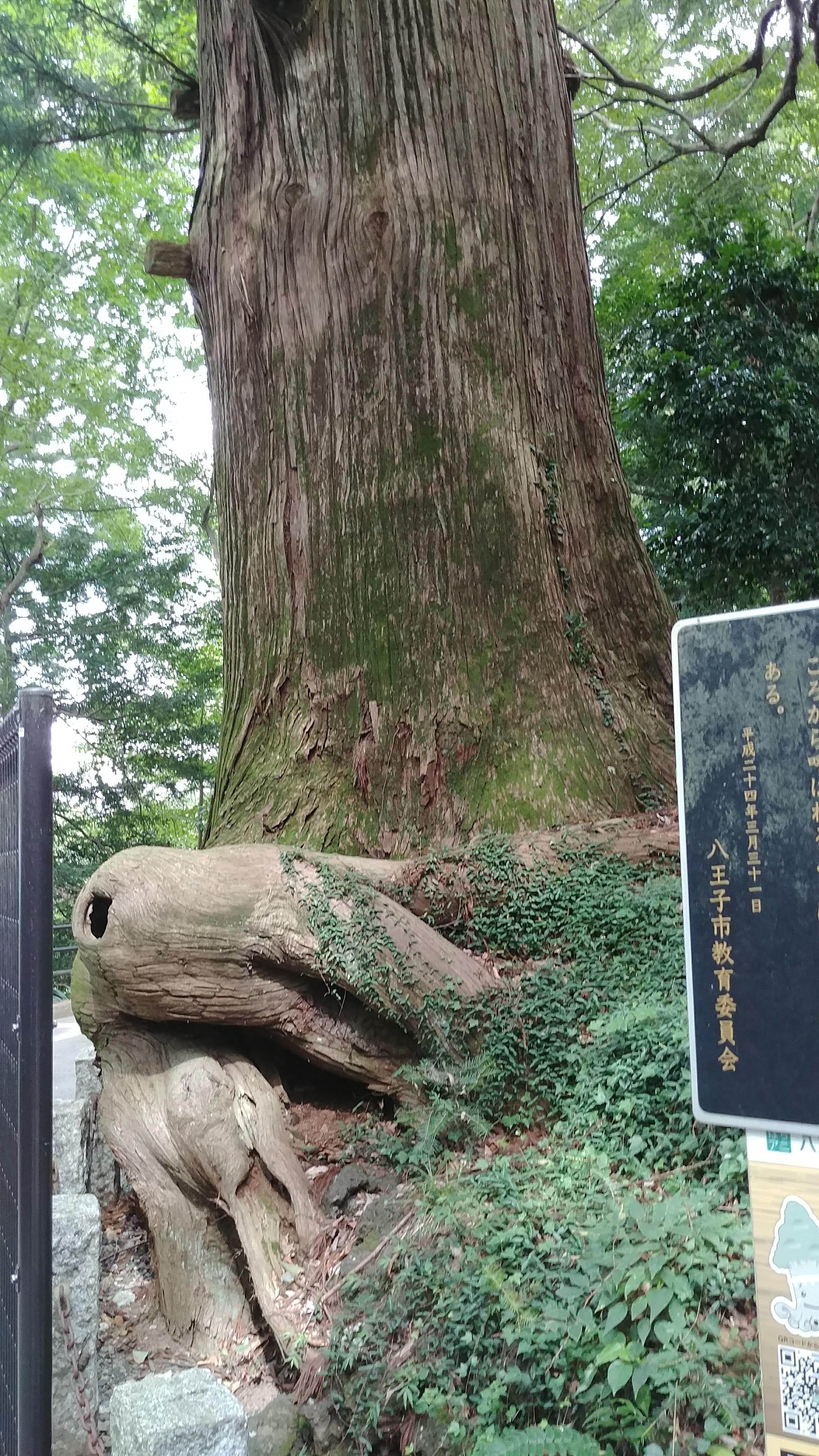 2_octotree.jpg