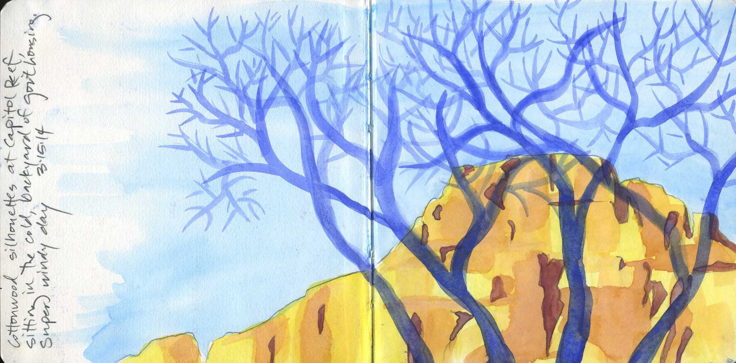 Cottonwood Silhouettes, Capitol Reef National Park, UT