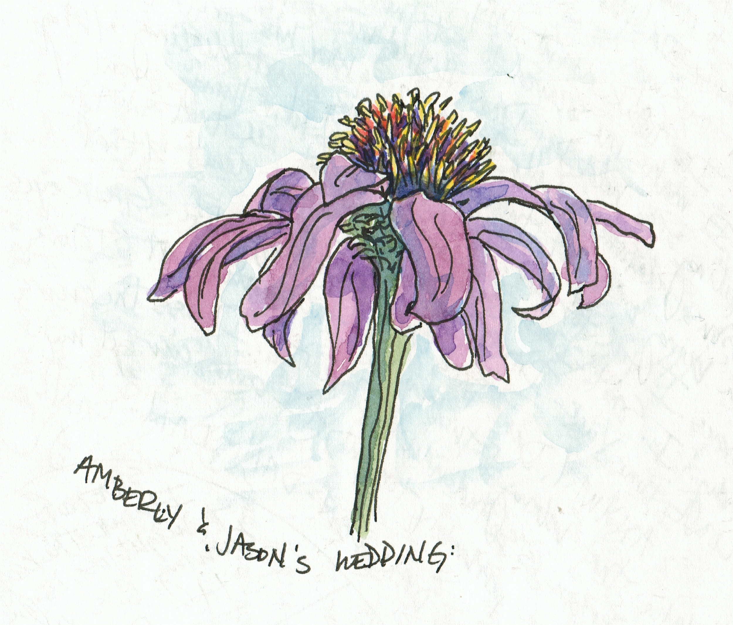AmberlysFlower1997.jpeg