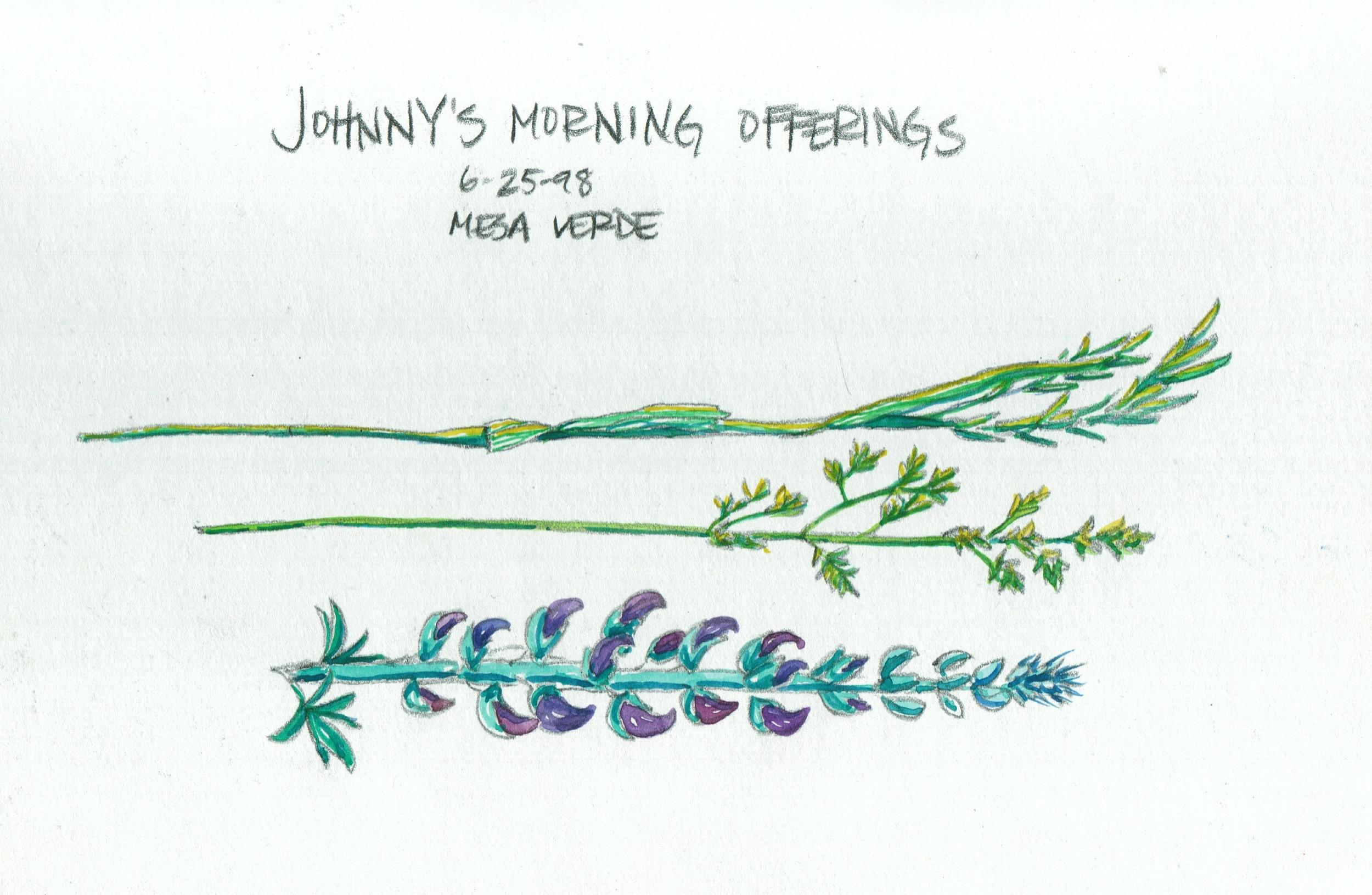 JohnnysOfferings1998.jpeg