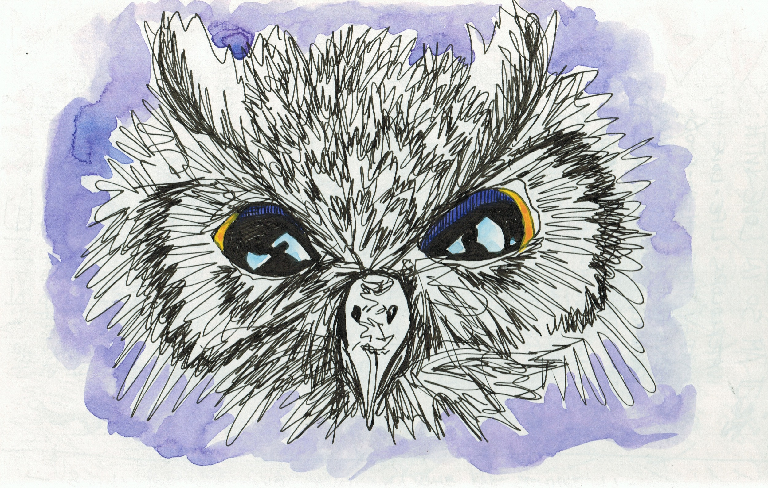 Owl1997.jpeg