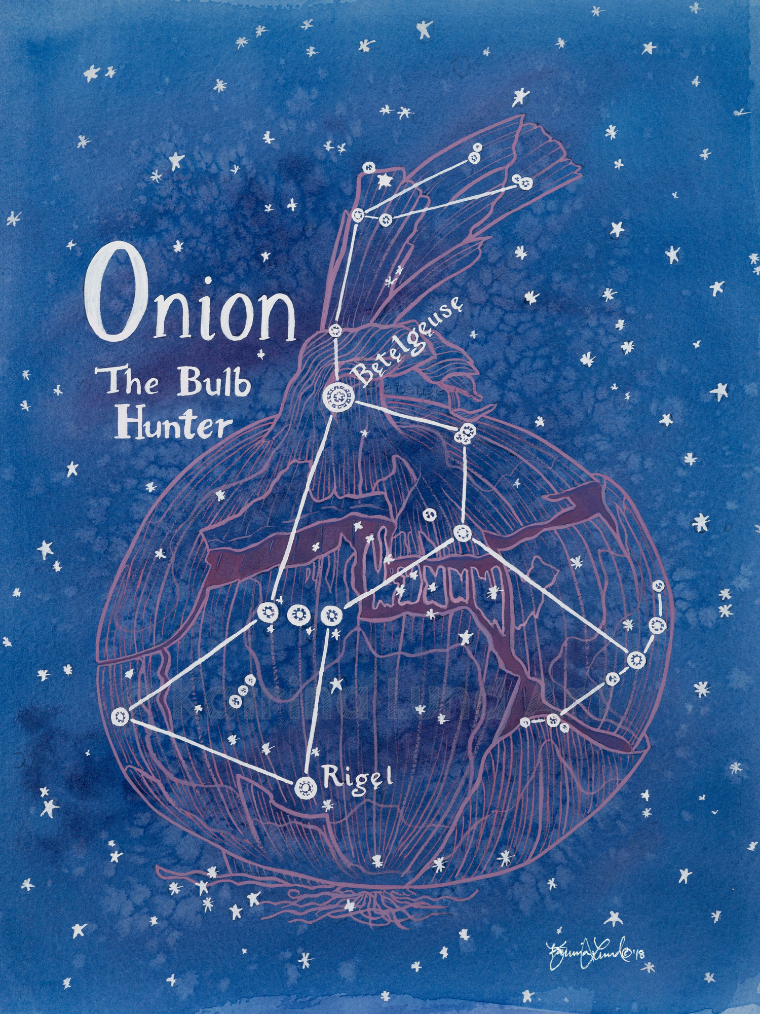 Onion by Night , watercolor & gouache.   Inspired by the constellation, Orion, the Hunter, a well-known and well-loved constellation.