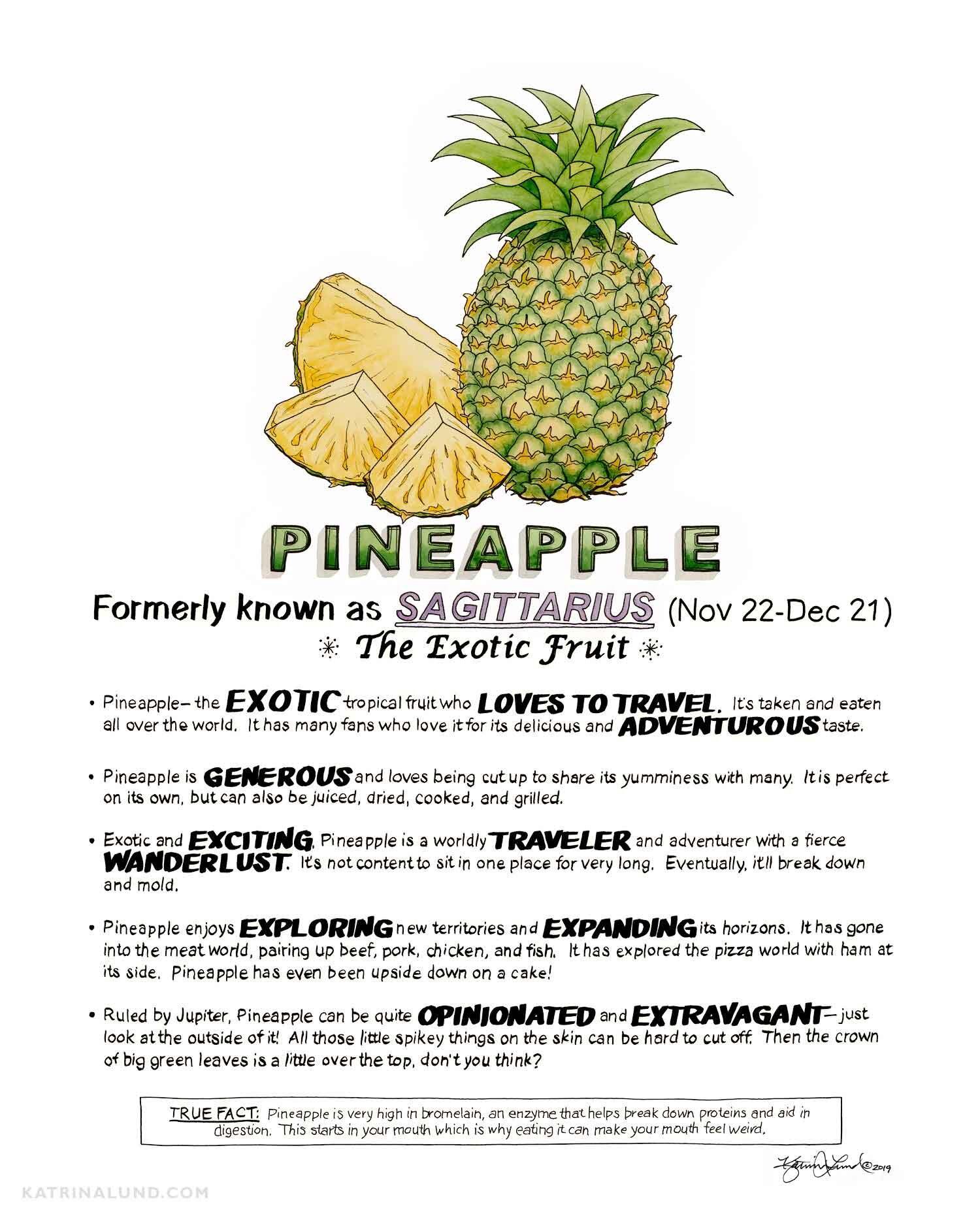 KatrinaLundArt_FruitAstrology_Pineapple_web.jpg