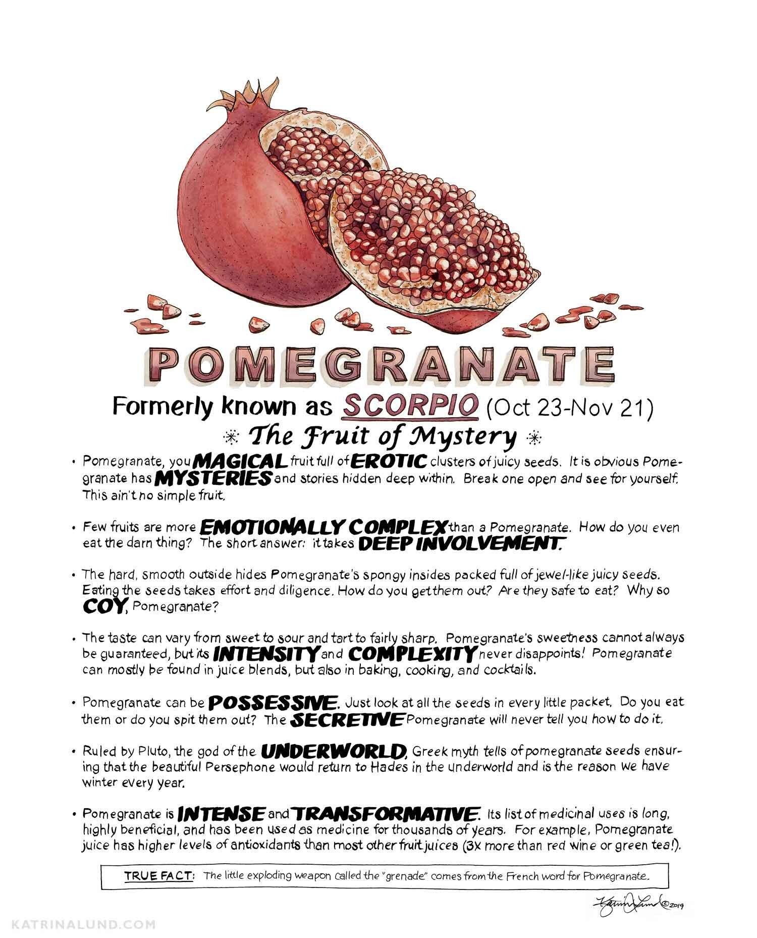 KatrinaLundArt_FruitAstrology_Pomegranate_web.jpg