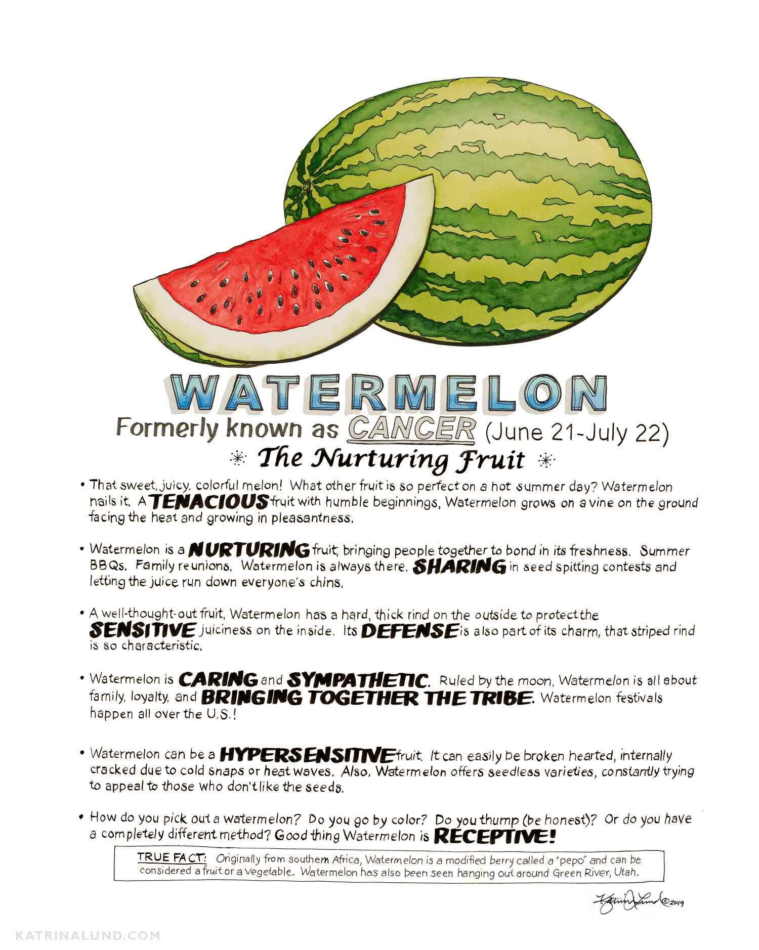 KatrinaLundArt_FruitAstrology_Watermelon_web.jpg