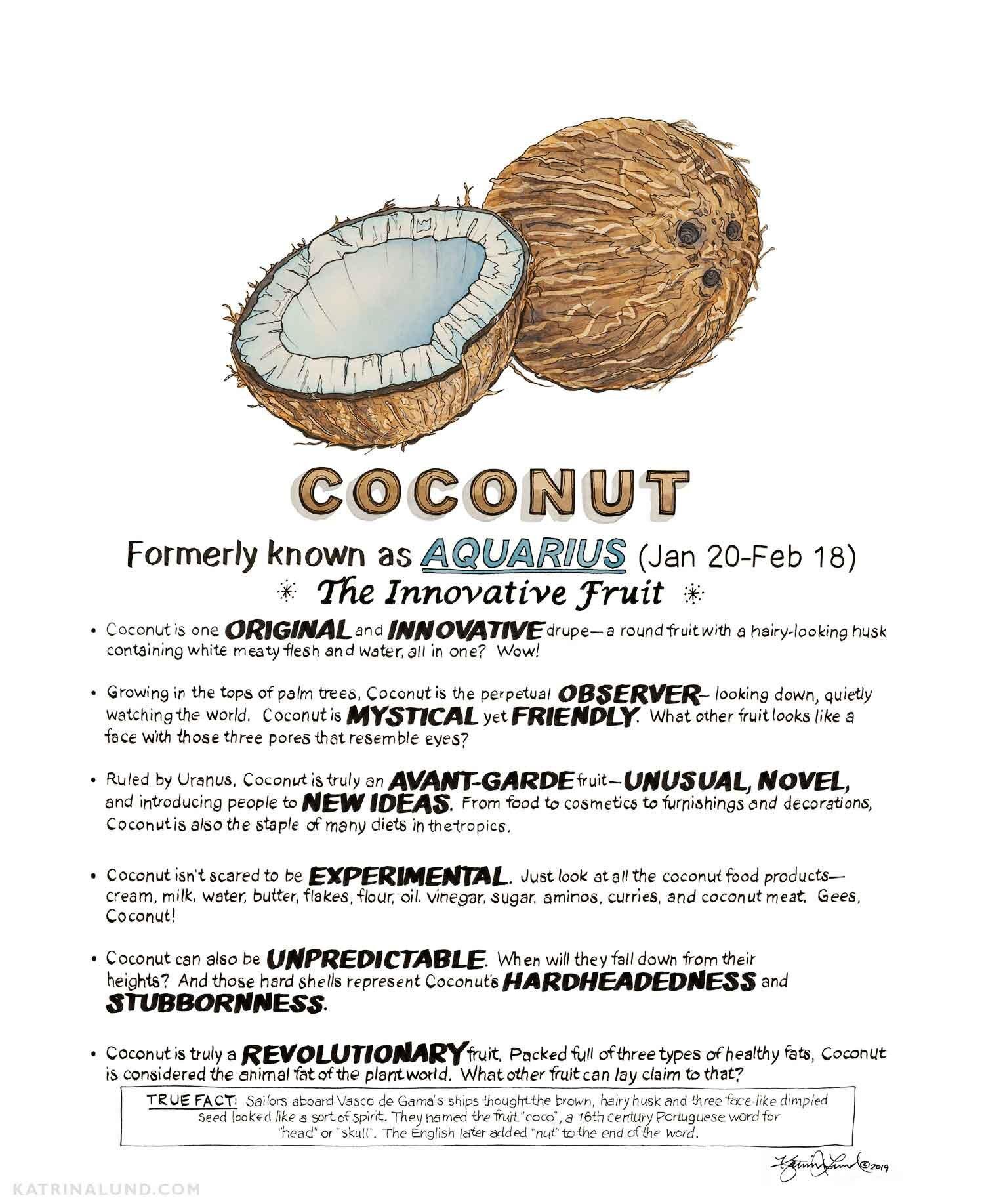 KatrinaLundArt_FruitAstrology_Coconut_web.jpg