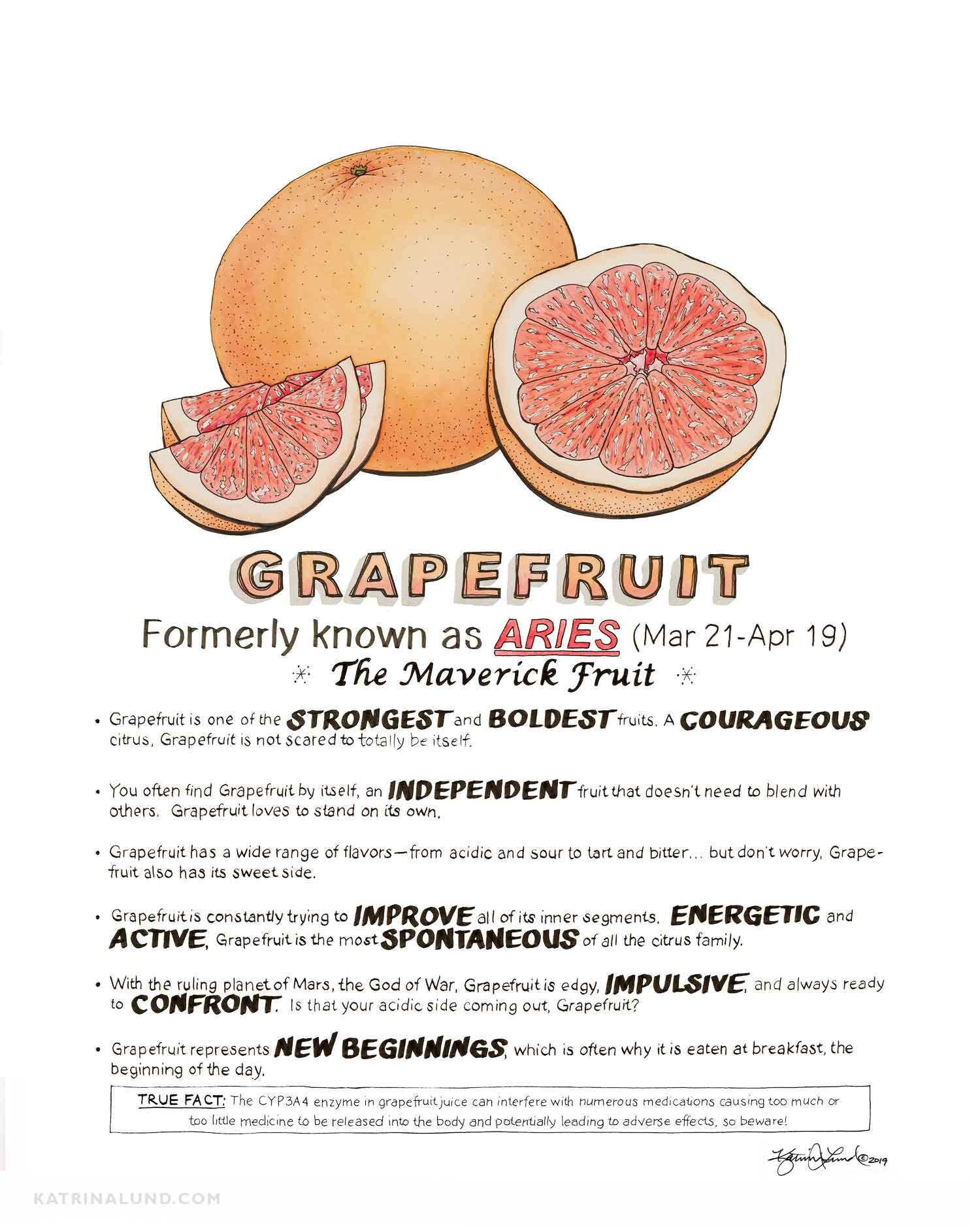 KatrinaLundArt_FruitAstrology_Grapefruit_web.jpg