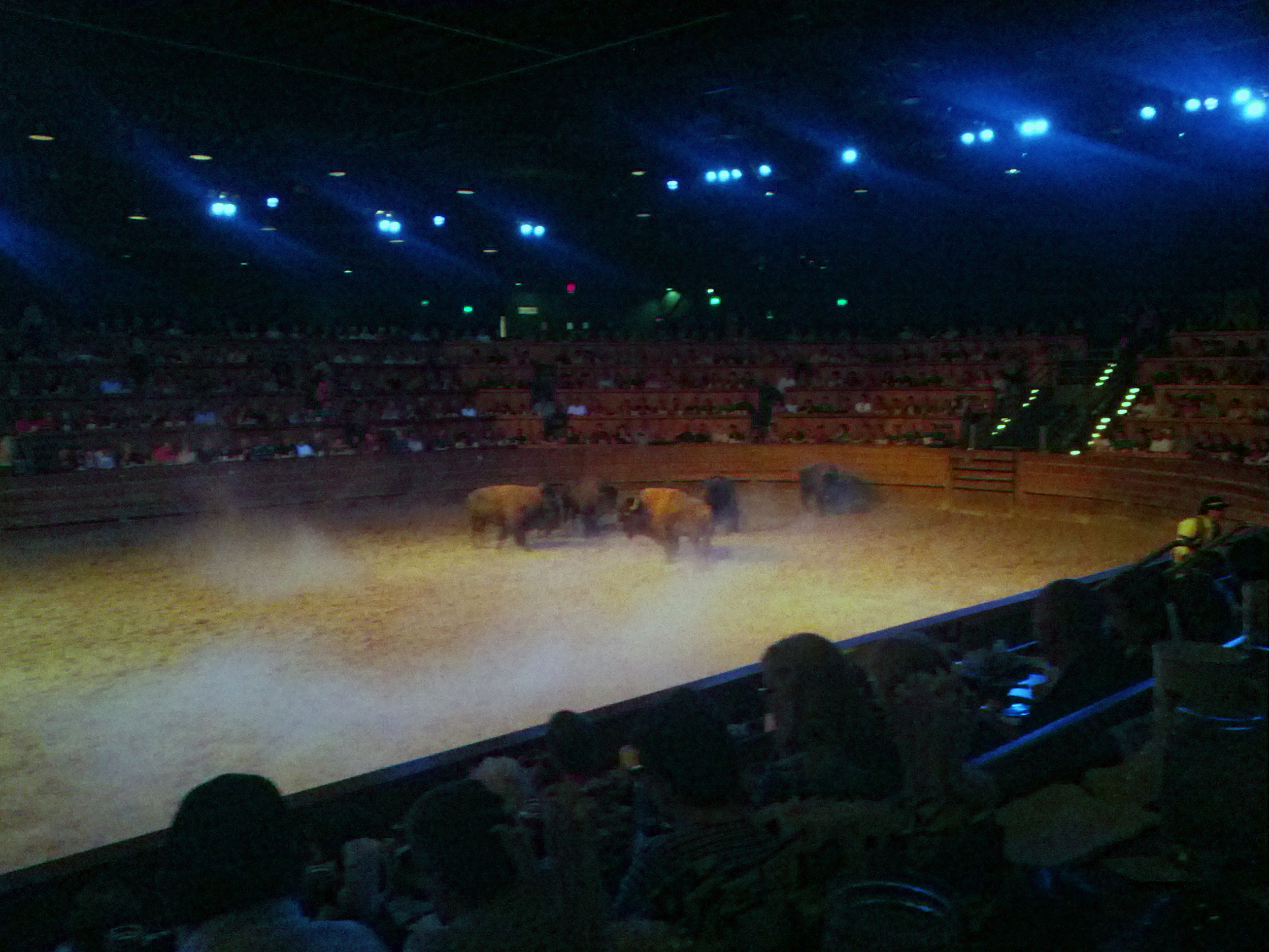 2013-09-26 Dixie Stampede, Pigeon Forge TN