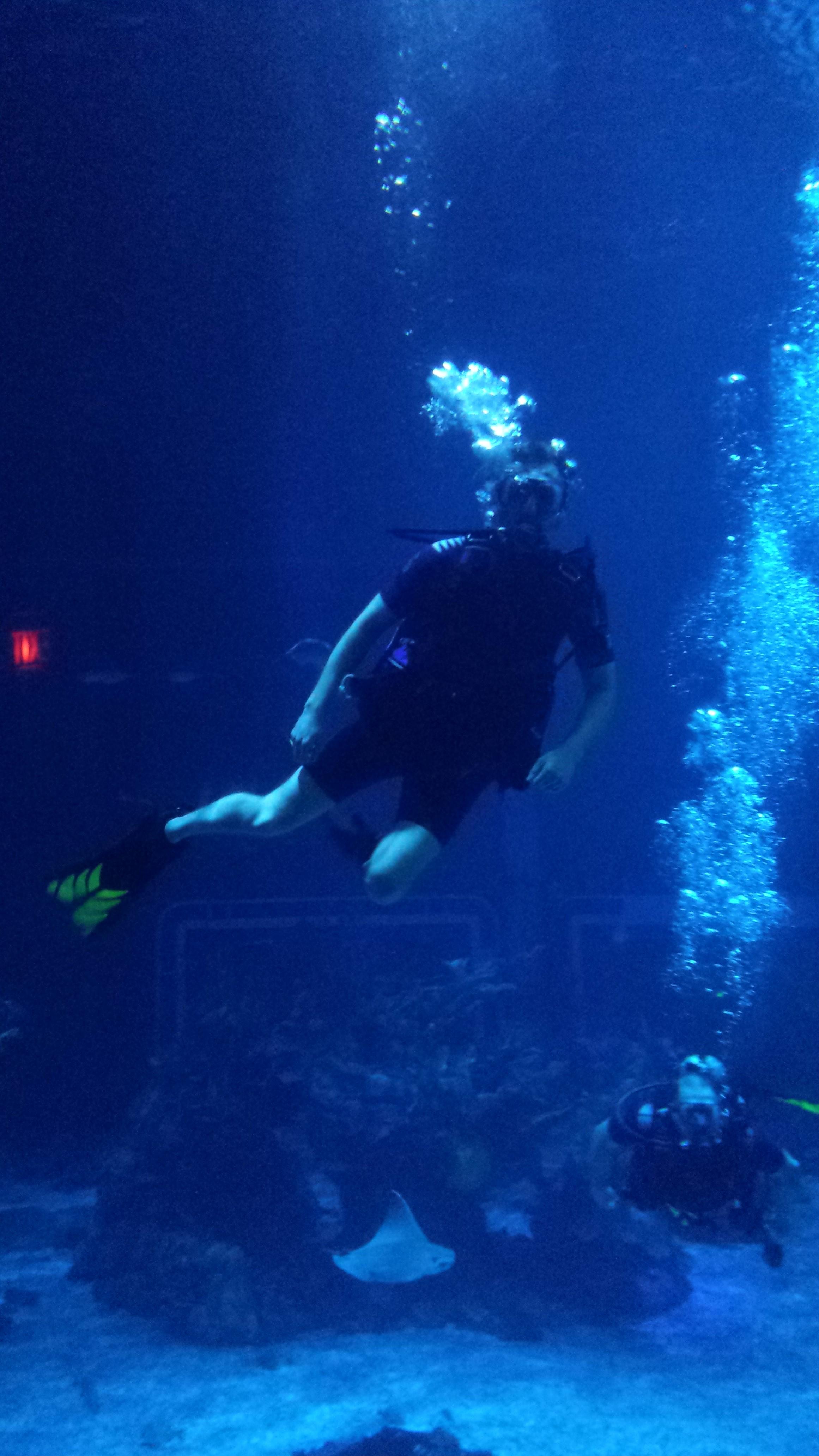 Disney World Epcot Center DiveQuest