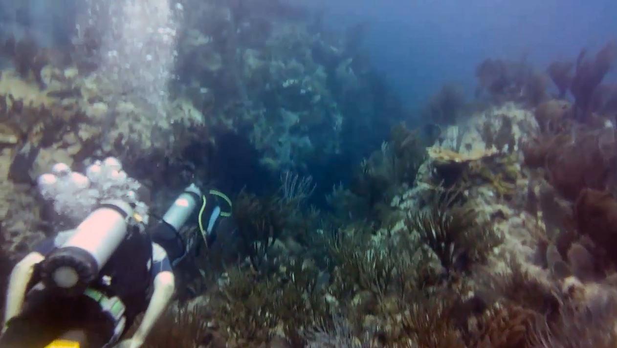 scuba diving at St. Maarten