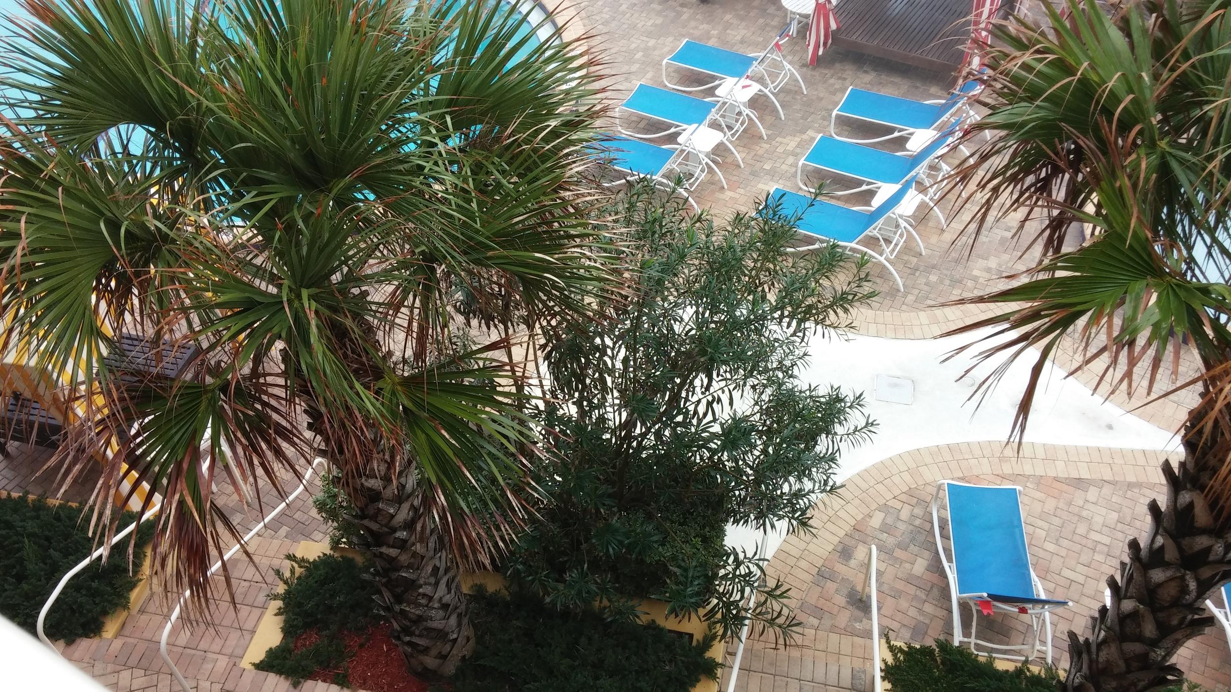 2016-01-08 The Shores Resort and Spa, Daytona Beach FL 1.jpg