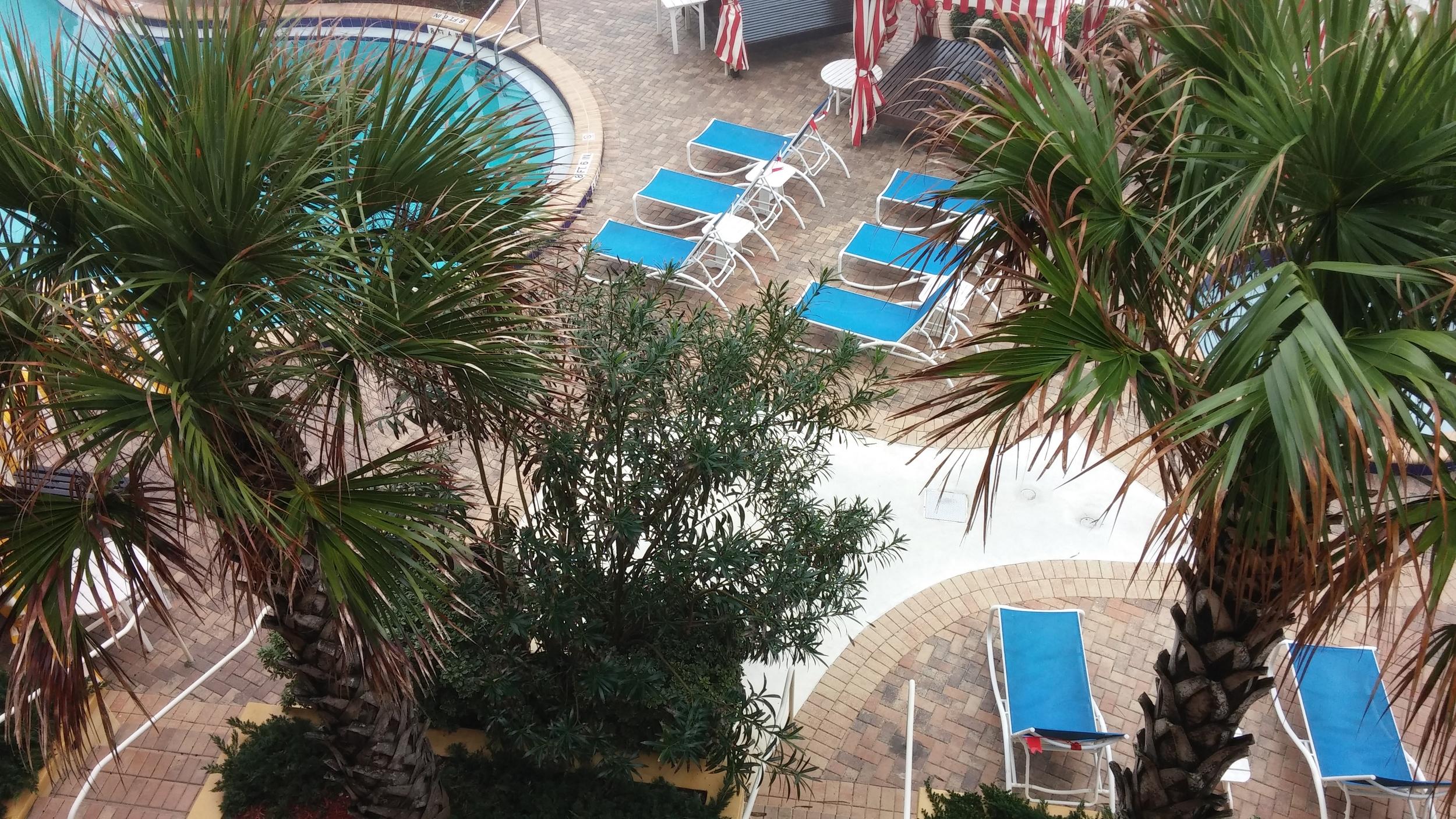 2016-01-08 The Shores Resort and Spa, Daytona Beach FL 6.jpg