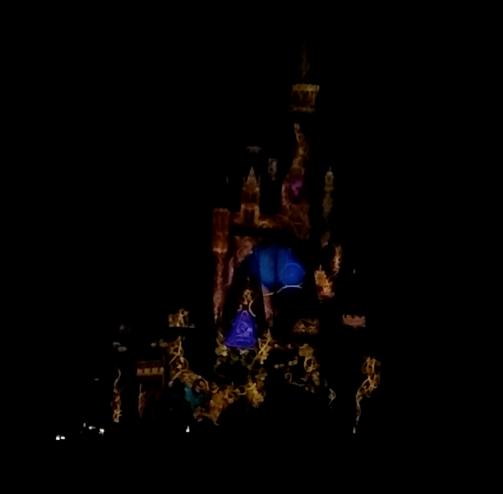 2016-01-13 WDW castle show 4.png
