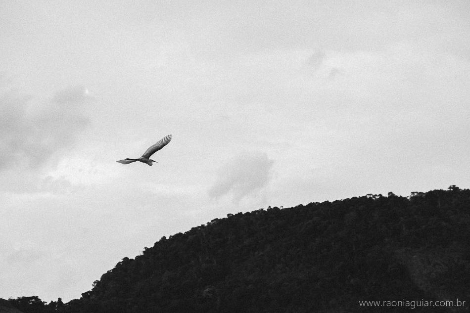 Raoni_Aguiar_Fotografia_VeR_102.jpg