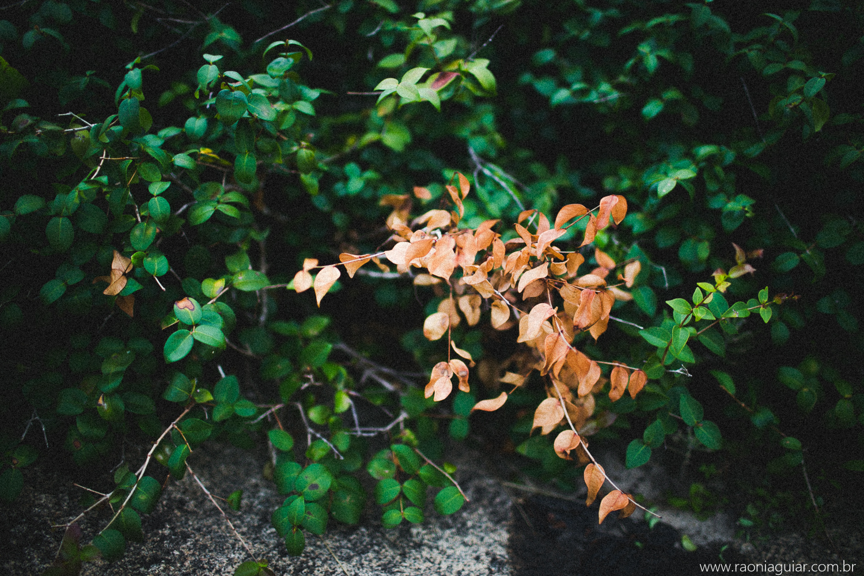 Raoní Aguiar Fotografia [Lu+Ra] 001.jpg