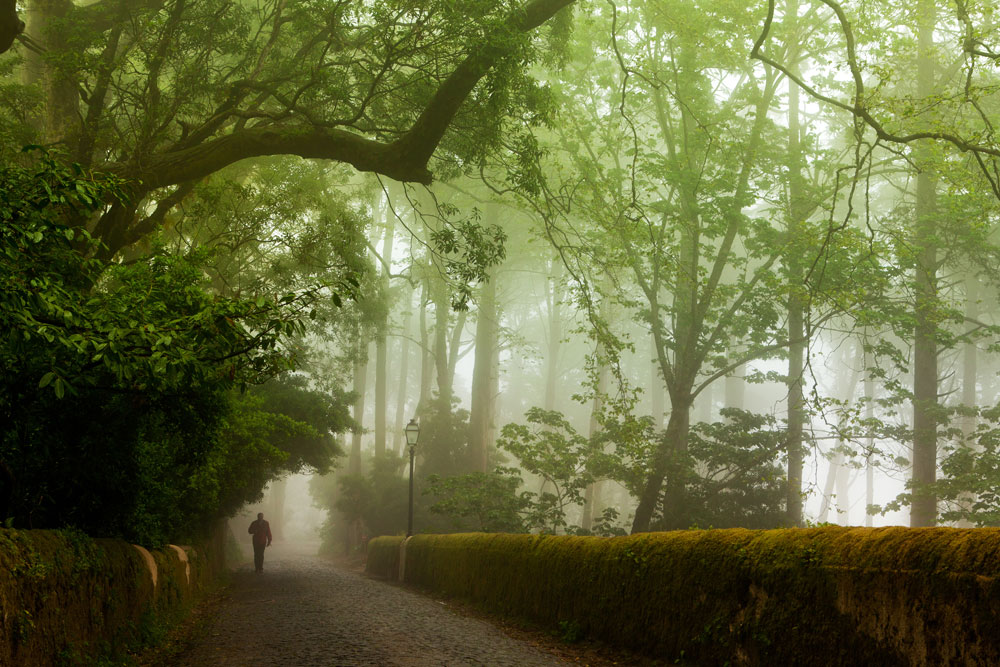 SINTRA EXPERIENCE -