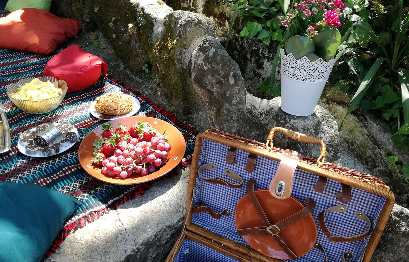 PICNIC EXPERIENCE -