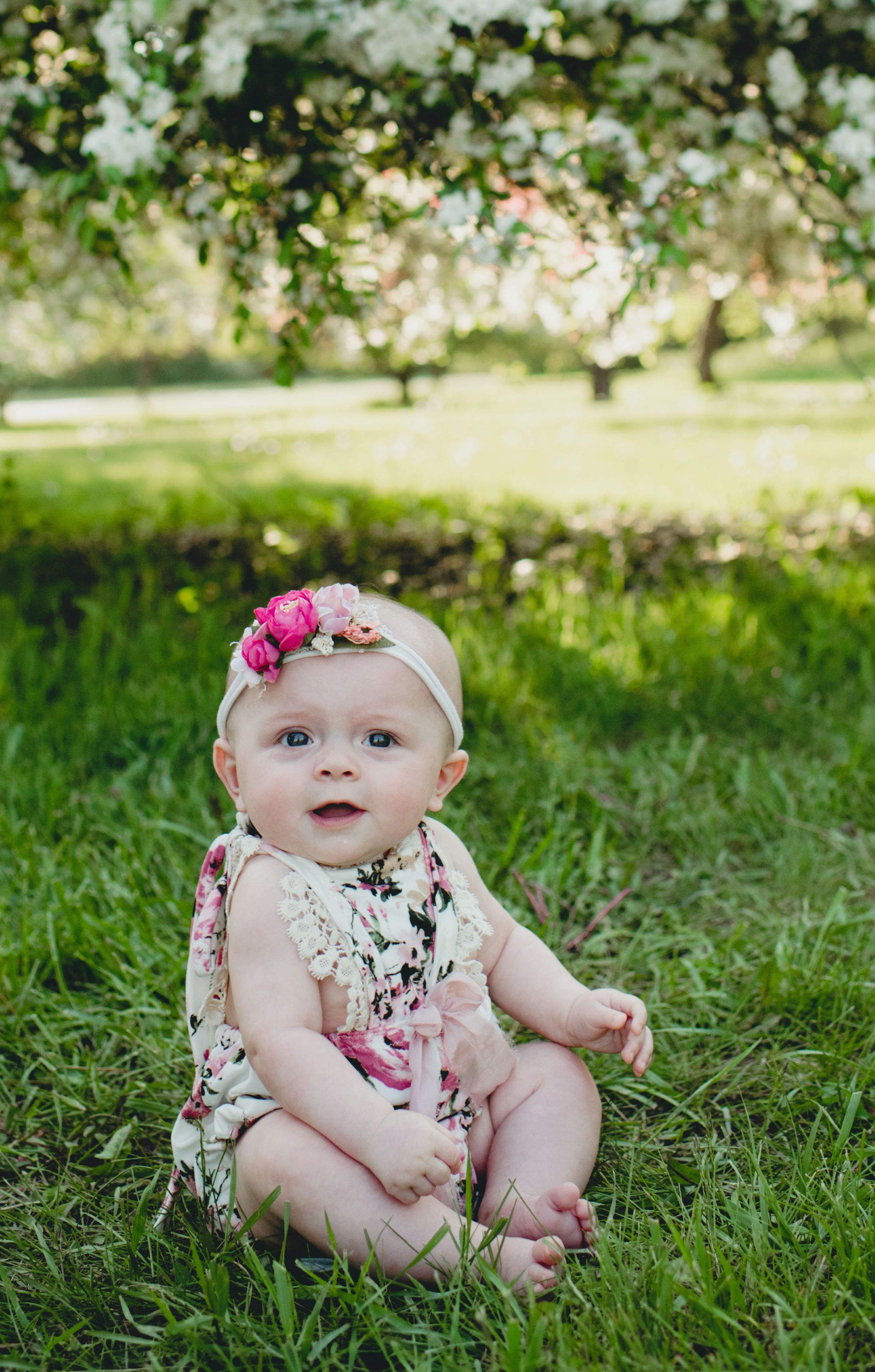 Look who is 6 Months Audrey_-4080.jpg