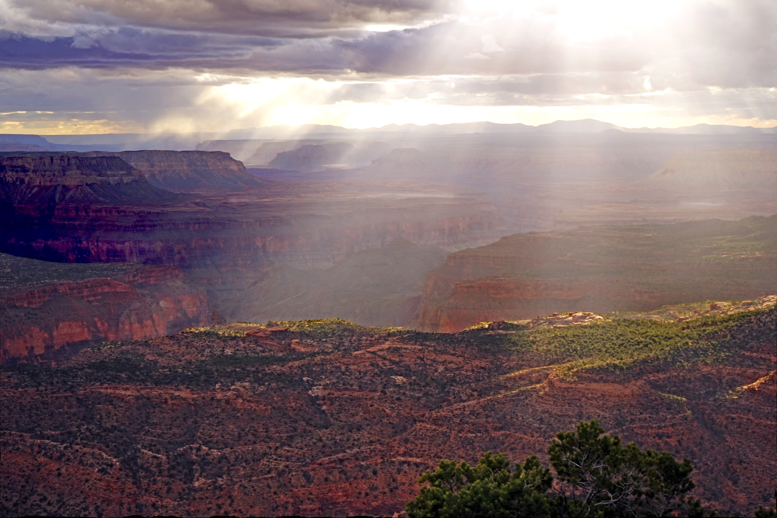 Sunset at Locust Point. Rainbow Rim, Grand Canyon, Arizona