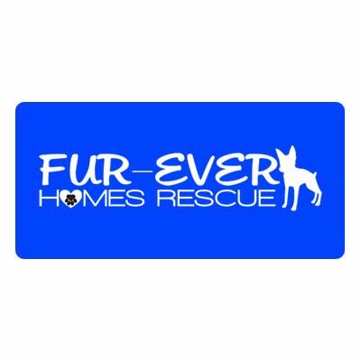 Fur Ever homes.jpg