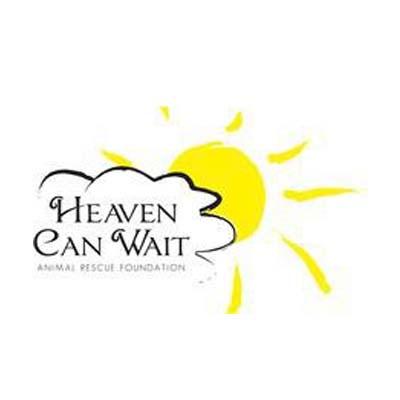Heaven Can Wait.jpg