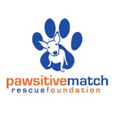 Pawsitive Match.jpg