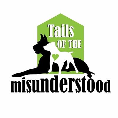 tails of the missunderstood.jpg