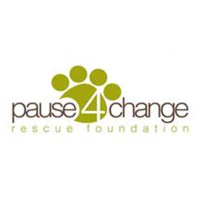 pause 4 change.jpg
