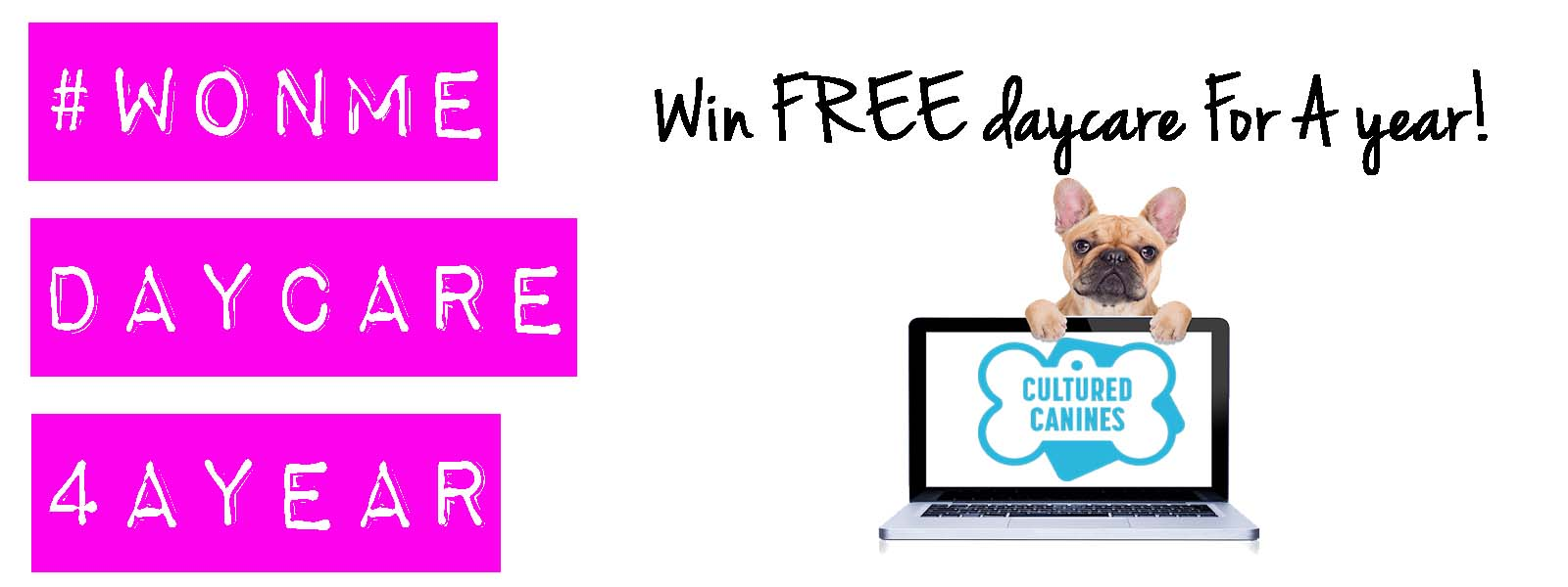 Visit the Cultured Canines Booth for your chance to win FREE Day Care for ONE YEAR! a $6,300.00 Value - Some restrictions apply. Please see exhibitor for details. Must attend Pet-A-Palooza to enter.
