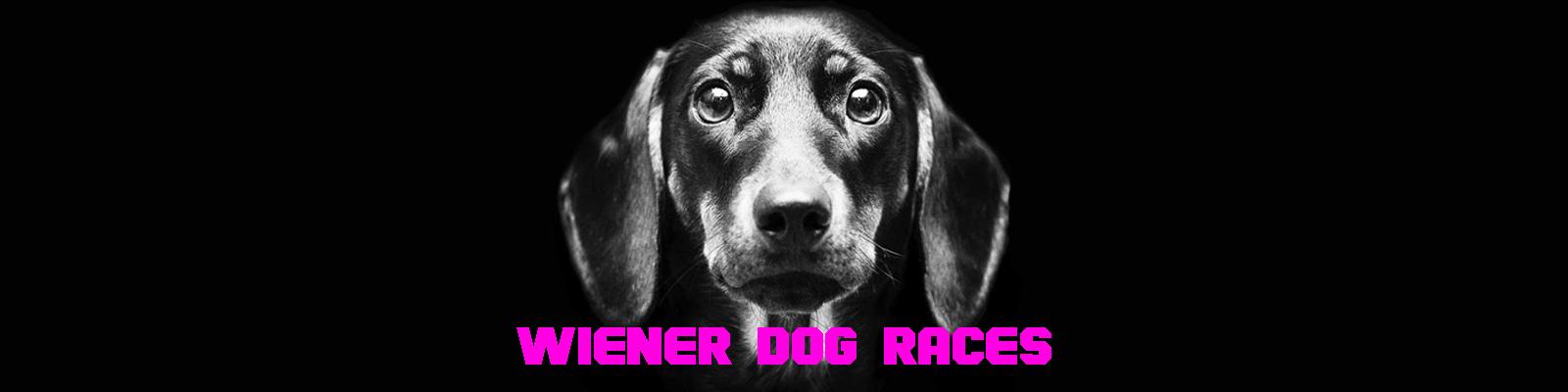 winer dog strip.jpg